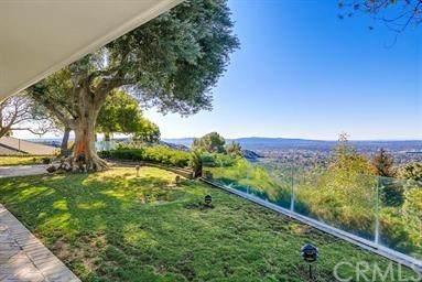 2203 Canyon Road, Arcadia, CA 91006 (#302602033) :: Whissel Realty