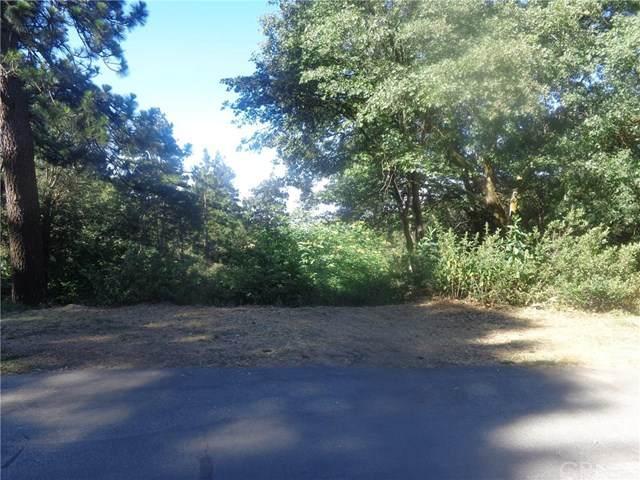 54 Vista, Cedar Pines Park, CA 92322 (#302603628) :: COMPASS