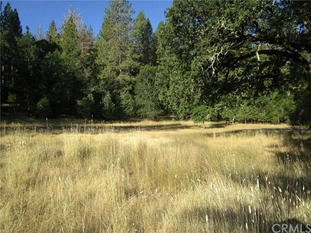 9141 State Hwy 175, Kelseyville, CA 95451 (#302623979) :: COMPASS