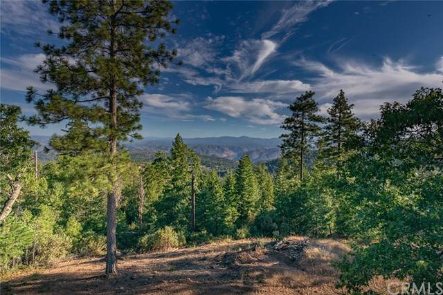 5422 Wilderness View, Mariposa, CA 95338 (#302629022) :: Whissel Realty