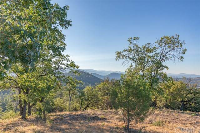 5393 Wilderness View, Mariposa, CA 95338 (#302629091) :: Whissel Realty