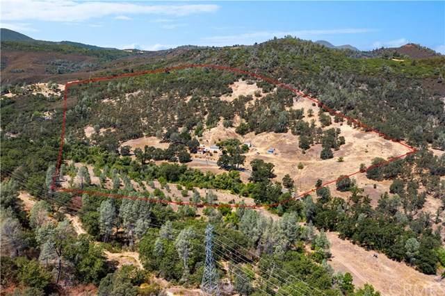 10925 Seigler Canyon Road - Photo 1