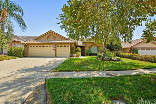 6893 Spinel Avenue - Photo 1