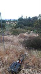 0 Adams, Pauma Valley, CA 92082 (#302652376) :: COMPASS