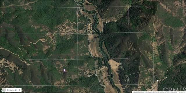 7265 Scotts Valley, Lakeport, CA 95453 (#302665223) :: Cay, Carly & Patrick | Keller Williams