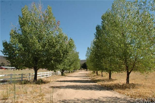 30648 Chihuahua Valley Road - Photo 1