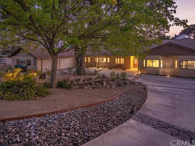 1038 Vista Grande Street, Paso Robles, CA 93446 (#302673926) :: Compass