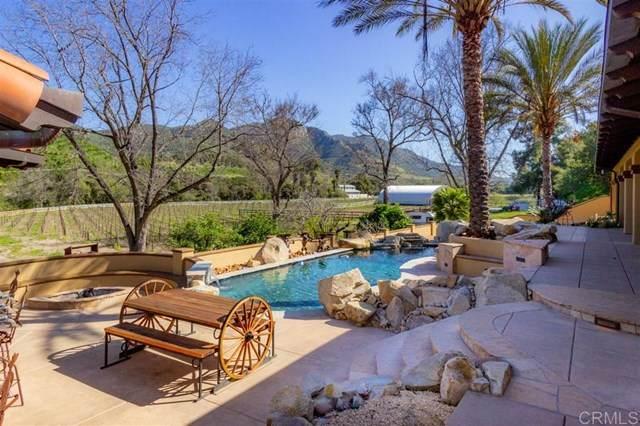 40689 De Luz Murrieta Rd, Fallbrook, CA 92028 (#302674368) :: San Diego Area Homes for Sale