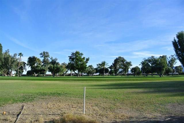 0 De Anza Drive Lot 299, Borrego Springs, CA 92004 (#140062732) :: Wannebo Real Estate Group