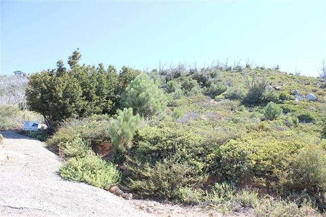 2 N Peak Way, Julian, CA 92036 (#302678330) :: San Diego Area Homes for Sale