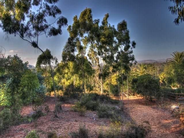 Mimosa, Rancho Santa Fe, CA 92067 (#302678400) :: Team Forss Realty Group