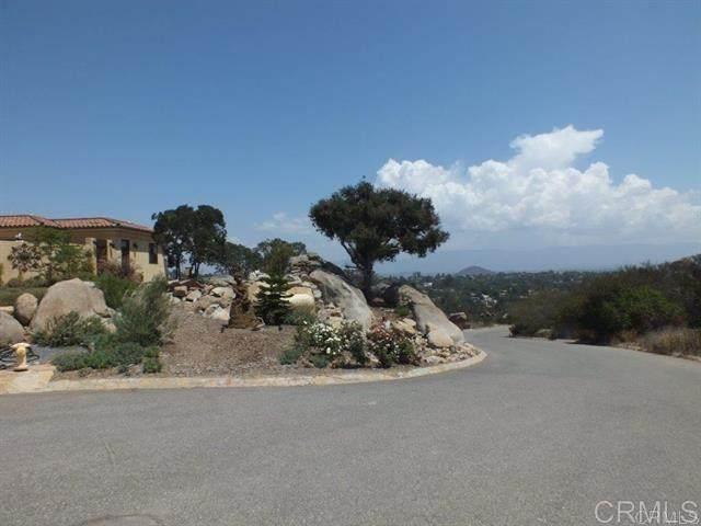 High Vista Drive, Escondido, CA 92026 (#302678476) :: Tony J. Molina Real Estate