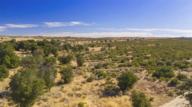 0 Montezuma Valley Rd, Ranchita, CA 92066 (#302678504) :: Cay, Carly & Patrick | Keller Williams