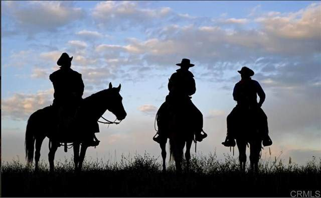0 Buckskin Rancho Barona Rd, Ramona, CA 92065 (#302678506) :: Cay, Carly & Patrick | Keller Williams