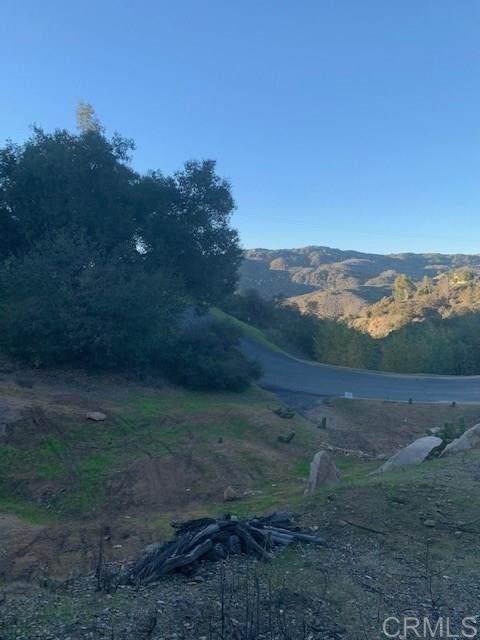 0 Hilbert Drive, Fallbrook, CA 92028 (#302678532) :: Cay, Carly & Patrick   Keller Williams