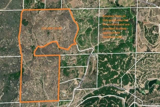 0 Harris Truck Trail 90.1 Acres, Fallbrook, CA 92028 (#302678580) :: Cay, Carly & Patrick   Keller Williams