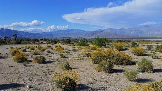 Rams Hill Drive, Borrego Springs, CA 92004 (#200015698) :: PURE Real Estate Group