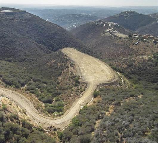 101 Cerro Del Sol 101, Rancho Santa Fe, CA 92067 (#302678892) :: Team Forss Realty Group