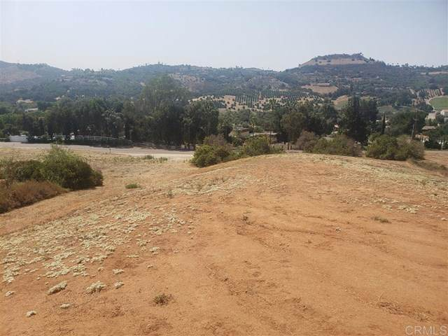 0 Camino Del Rey, Bonsall, CA 92003 (#302678984) :: Solis Team Real Estate