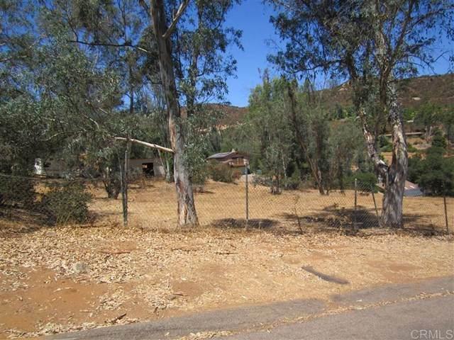 Johnson Lake Rd, Lakeside, CA 92040 (#302679001) :: Solis Team Real Estate