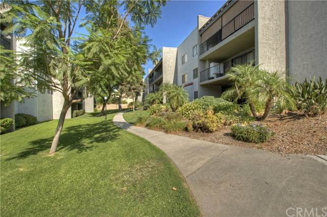 250 E Fern Ave #205, Redlands, CA 92373 (#302874106) :: COMPASS