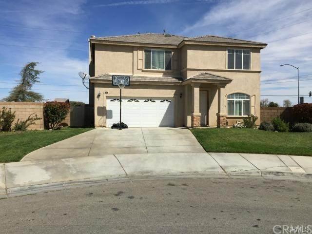 1847 E Lingard Street, Lancaster, CA 93535 (#302874248) :: COMPASS
