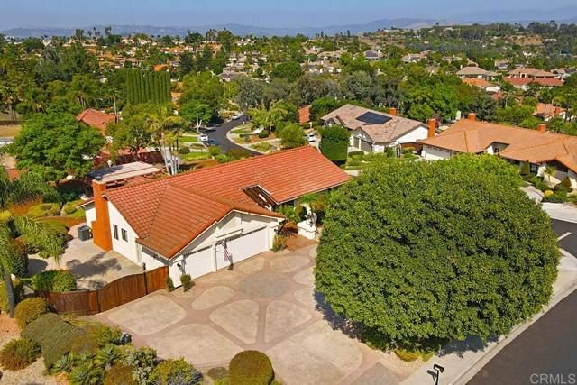2229 Eucalyptus Avenue, Escondido, CA 92029 (#302949145) :: Wannebo Real Estate Group
