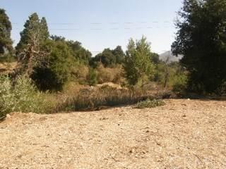 0 Vac/Cor Shoreline/El Fuente, Green Valley, CA 91350 (#302956336) :: Solis Team Real Estate