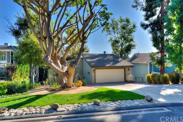 31932 Via Coyote, Coto De Caza, CA 92679 (#302957963) :: SD Luxe Group
