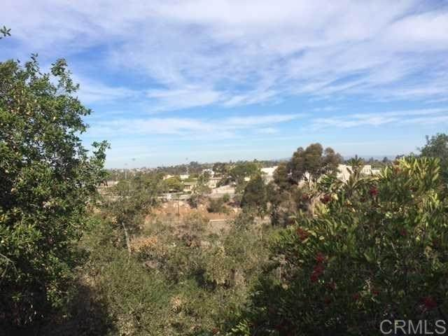 0 Shadow Rd, La Mesa, CA 91941 (#302963756) :: SD Luxe Group
