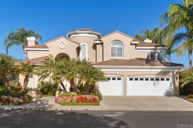 6211 Paseo Colina, Carlsbad, CA 92009 (#302966127) :: The Stein Group