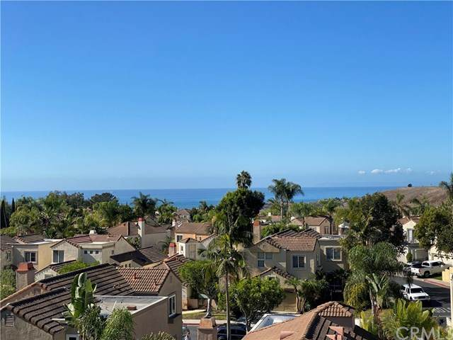 1054 Calle Del Cerro #807, San Clemente, CA 92672 (#302966708) :: SD Luxe Group