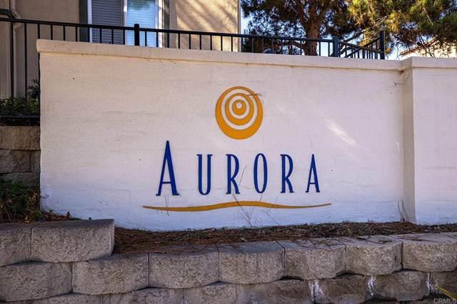 1687 Paseo Aurora - Photo 1