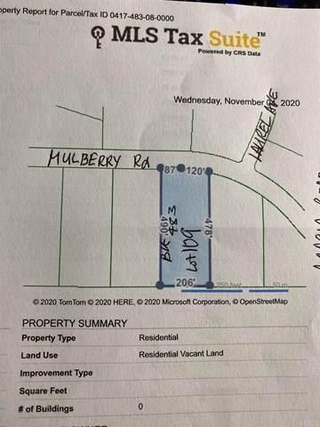 Mulberry - Photo 1