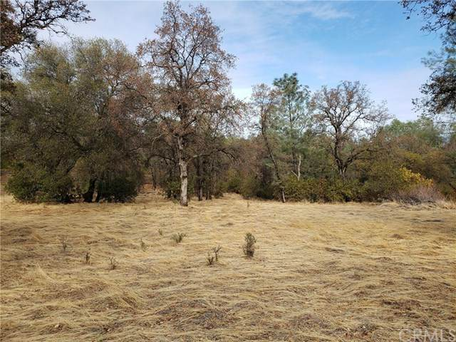 0 Grimont, Oroville, CA 95966 (#302970132) :: Compass