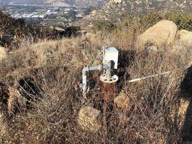 39011 Rainbow Peaks Trail, Fallbrook, CA 92028 (#302971545) :: San Diego Area Homes for Sale