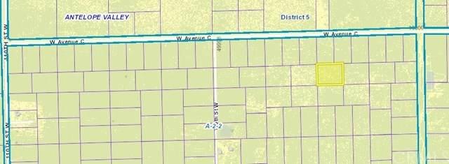 0 Vac/Vic Avenue C2/102 Stw, Antelope Acres, CA 93536 (#302972220) :: Solis Team Real Estate