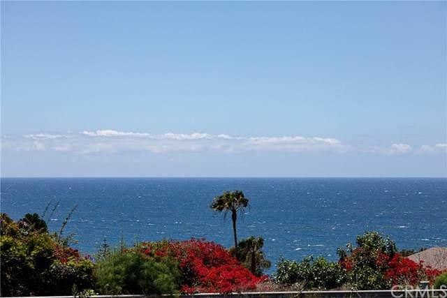 32282 Coast Hwy, Laguna Beach, CA 92651 (#302975900) :: Dannecker & Associates