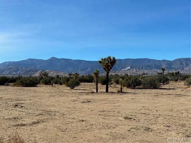 0 Yucca - Photo 1