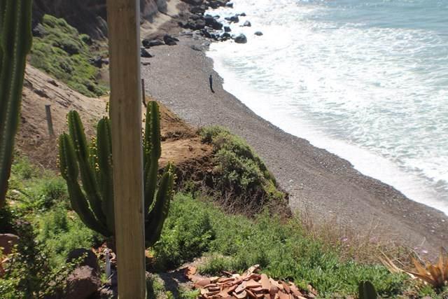 Baja Ca, Outside Area (Outside Ca), CA 22550 (#PTP2002216) :: Team Forss Realty Group