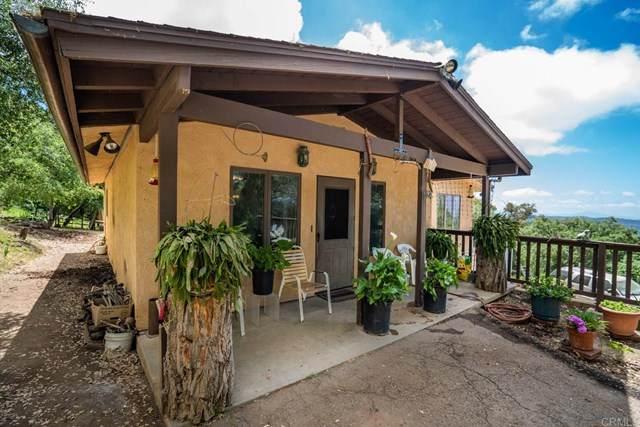 25235 Mesa Grande Road, Santa Ysabel, CA 92070 (#NDP2100325) :: Wannebo Real Estate Group
