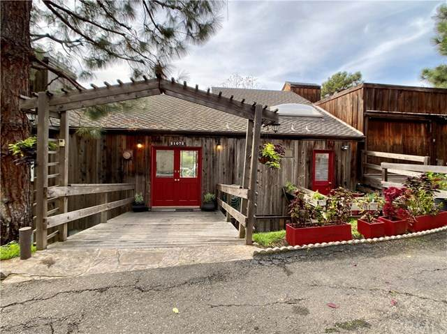 21072 Stan Oak Drive, Laguna Beach, CA 92651 (#303000269) :: The Legacy Real Estate Team