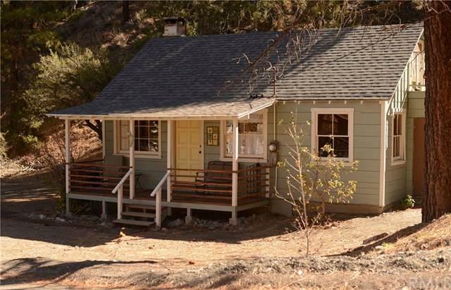 5191 E Canyon Drive, Wrightwood, CA 92397 (#303001047) :: COMPASS