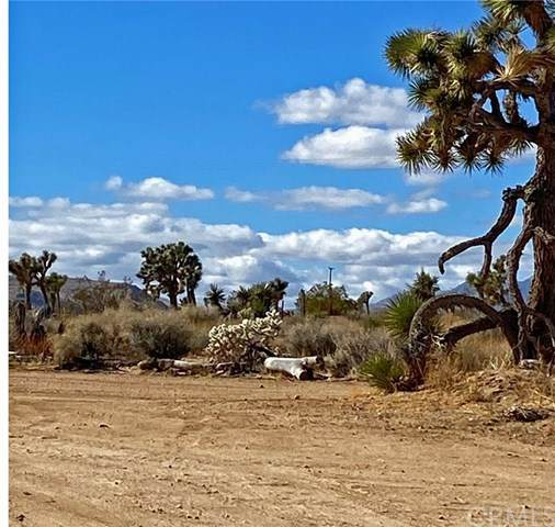 0 Songbird, Yucca Valley, CA 92284 (#303004104) :: Cay, Carly & Patrick | Keller Williams