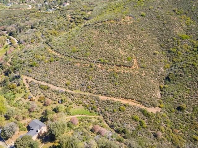 1 Chateau Dr., Julian, CA 92036 (#303006889) :: Tony J. Molina Real Estate