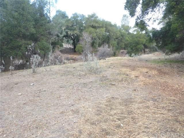 0 Vineyard Canyon (Parcel 29), San Miguel, CA 93451 (#303007018) :: Tony J. Molina Real Estate