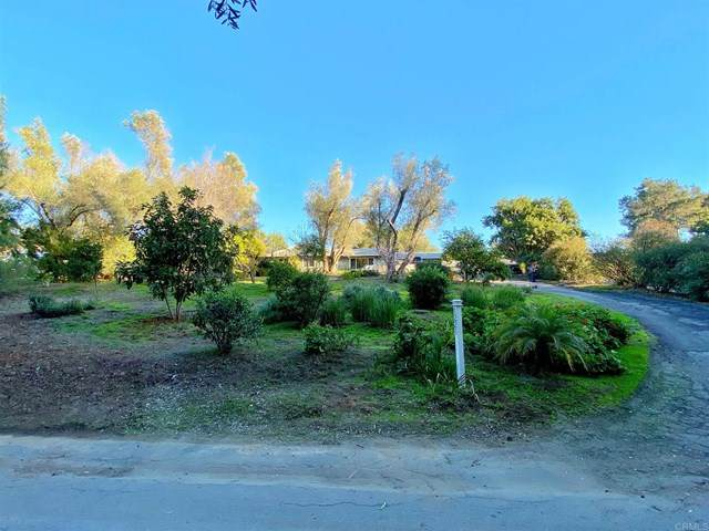 1221 Palomino Road, Fallbrook, CA 92028 (#303015093) :: Compass