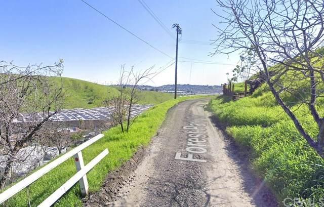 2541 Forest Park Dr, El Sereno, CA 90032 (#303020532) :: Compass
