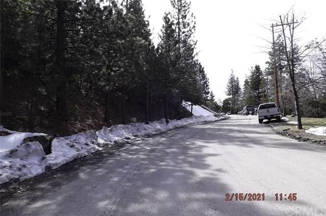0 Spruce - Photo 1
