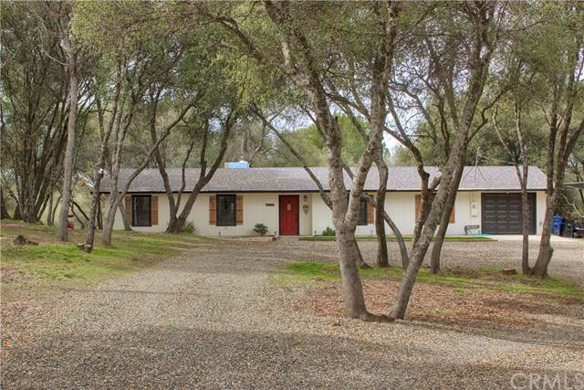 31392 Mohawk Road, Coarsegold, CA 93614 (#303026096) :: SD Luxe Group
